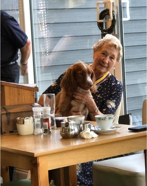 GOOD BOY: Inner Wheel President Joan Rees with one of the Rescue Dogs