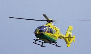 Elderly man airlifted to hospital after ladder accident