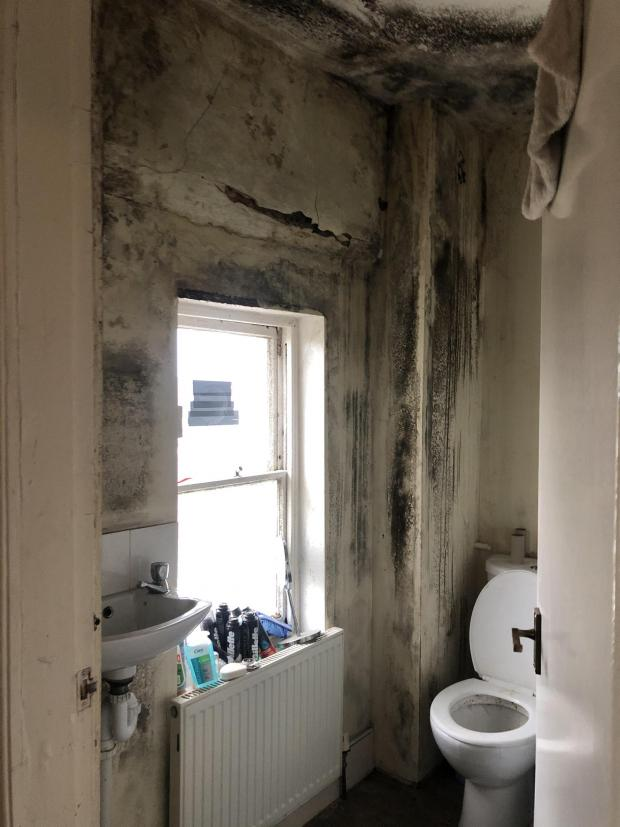 Harwich and Manningtree Standard: DISGRACEFUL CONDITIONS: The whole bathroom wall is covered with black mould