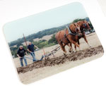 Harwich and Manningtree Standard: Glass Chopping Board