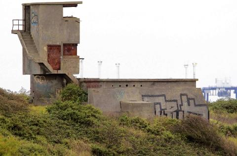 Fort owner's idea to grant former vandals amnesty