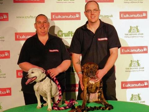 Dovercourt dogs wow crowds at Crufts