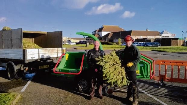 Hundreds of Christmas trees are shredded by council