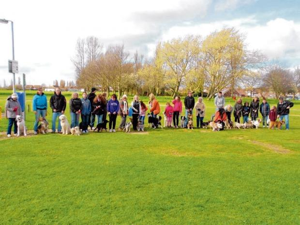 Dog walk raises trip cash