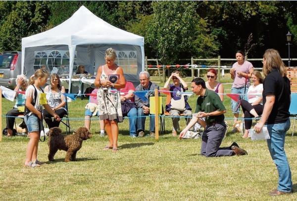 Fun for furry friends at annual dog show