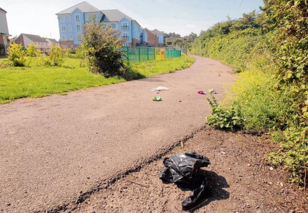 Residents of new estate fear rat infestation if path isn't cleared up