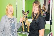 Business paws – Hayley Allen, right, with tutor Denise Westbrook.