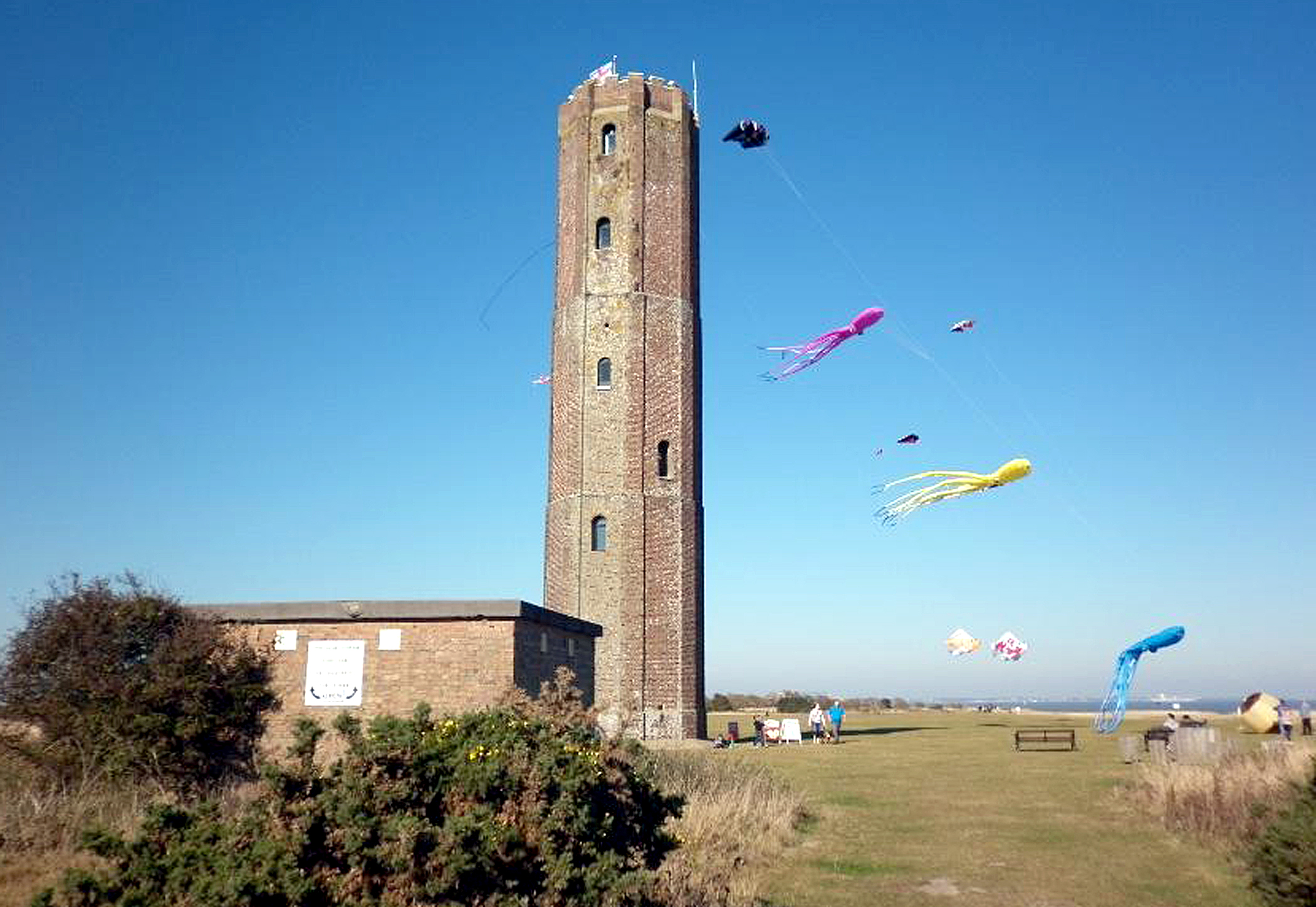 Kites at the Naze Tower in Walton, photographed by reader Sally Harris.