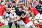 Jonny Gray wants improvements from impressive Scotland