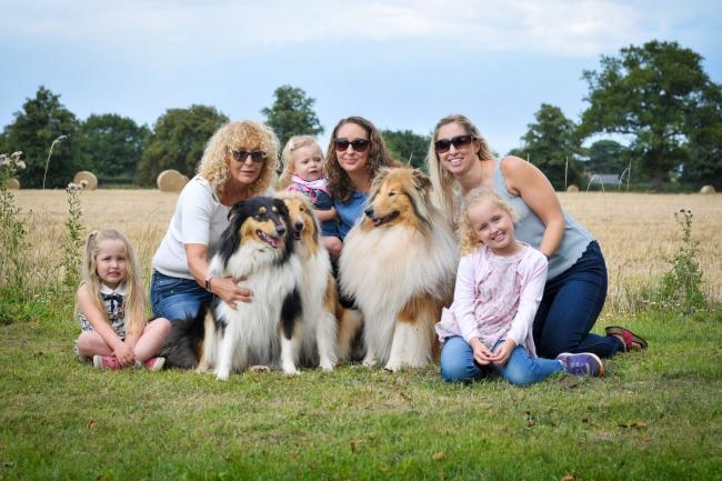 Paws for thought: Families and their four-legged friends at last year's show Picture: Simon Tavner
